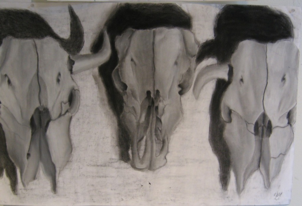 """""""Skull Trio,"""" a set of three cow skulls rendered in charcoal. by high-school freshman Romare Marshall."""