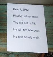 Wait a minute, Mr. Postman! Photo courtesy Marianne LaRoche.