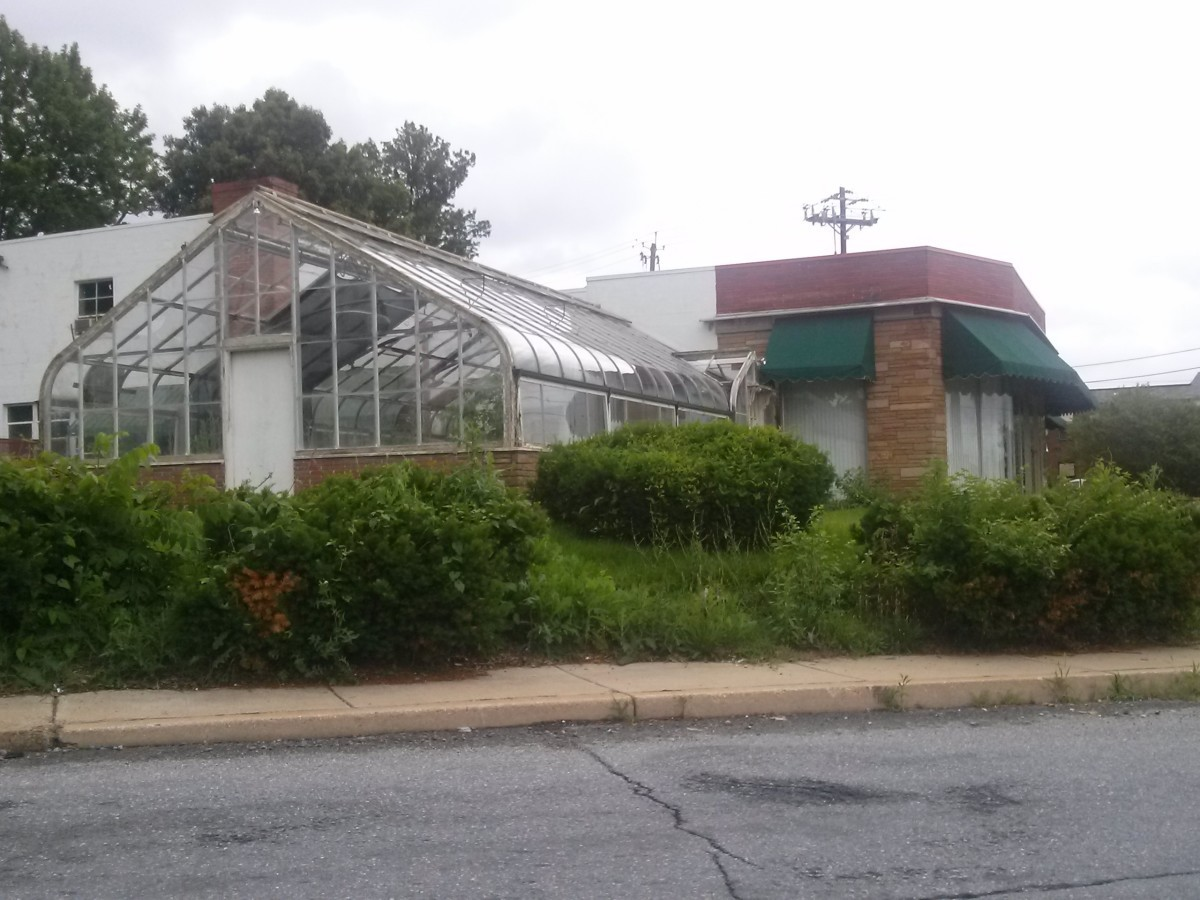 The March Florist building as it currently stands.  Photo courtesy Rebecca Bennett.