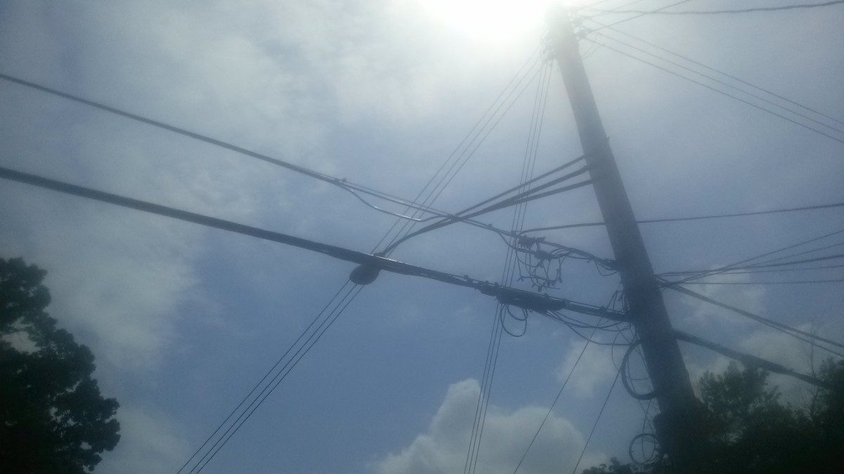 Animals, trees cause power outages