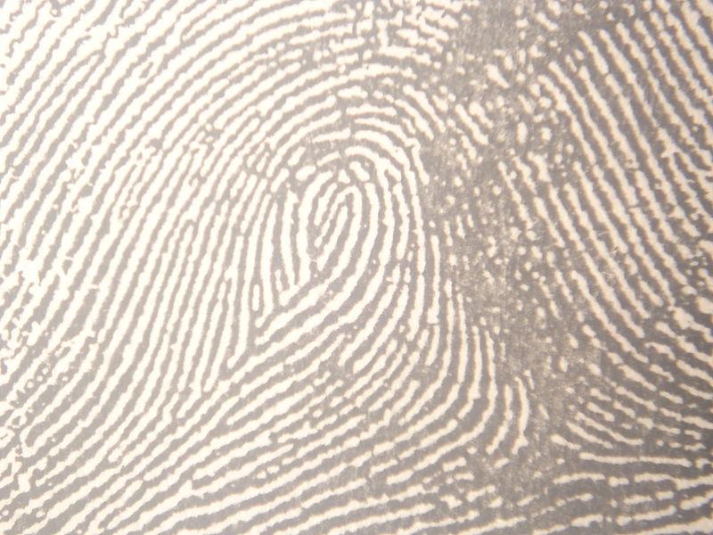 Electronic fingerprinting for Hyattsville