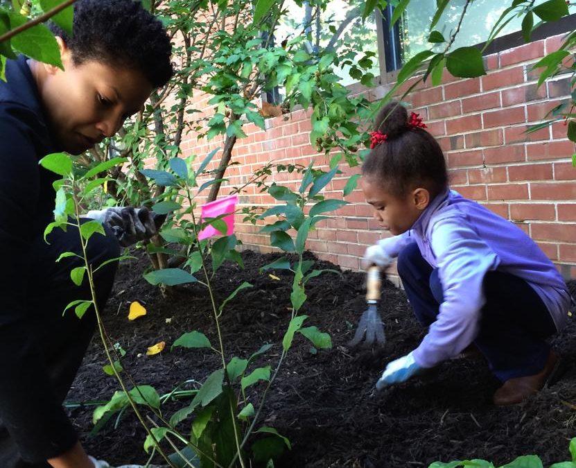 PHOTOS: Volunteers plant around schools, neighborhood