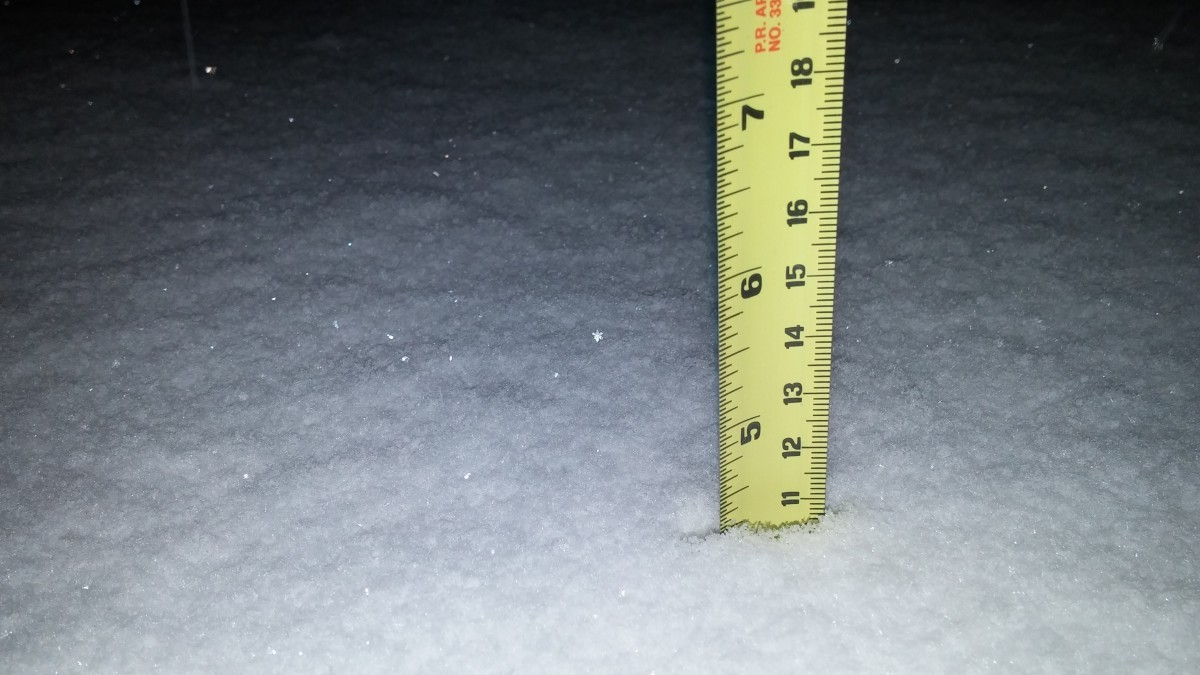More: Snow hits Prince George's County; cancellations and closures