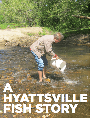 The author is caught stacking the deck in his quest for Hyattsville trout. Photo by Mark Staley.